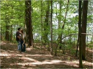 two People Looking at a Lake through the Woods