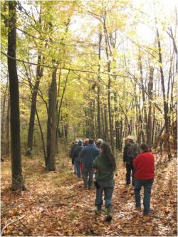 People Walking Through Walter Reserve in Fall