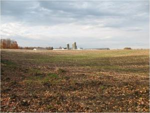 Photo of large open field