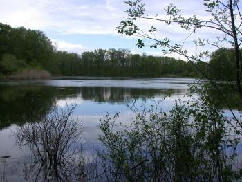 Landscape Shot of Seneca Lake