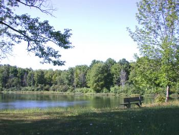 Photo of Bench in front of Lake