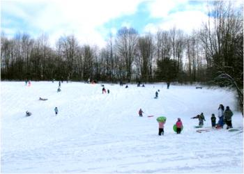 People Sledding down a hill in Towner's Woods