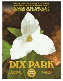 Dix Park poster