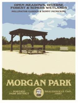 Morgan Park poster