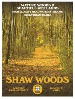 Shaw Woods poster