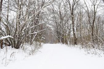 Dix Park snowy