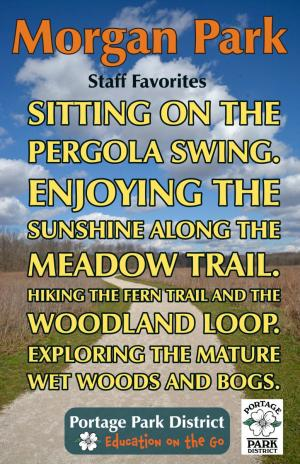 Morgan Park staff favorites, pergola swing, meadow trail, fern trail, woodland loop, mature wet woods and bogs