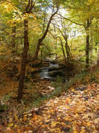 Waterfall Headwaters on Trail Hiram during the fall