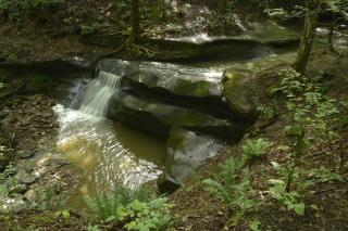 A small waterfall flows over rocks and is shaded by trees and vegetation,