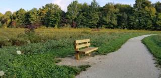 Wooden bench along the limestone paved Meadow Trail at Morgan Park. Blue sky, trees in background, and meadow around bench.