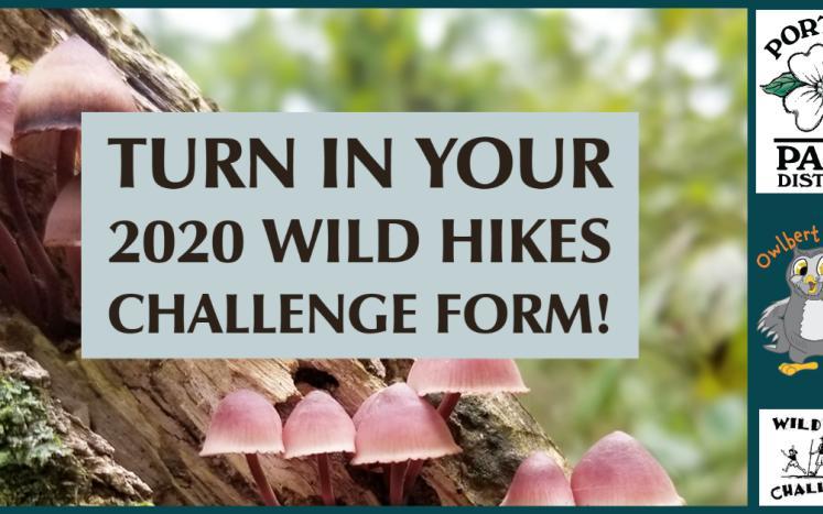 Wild Hikes Challenge form turn in artwork